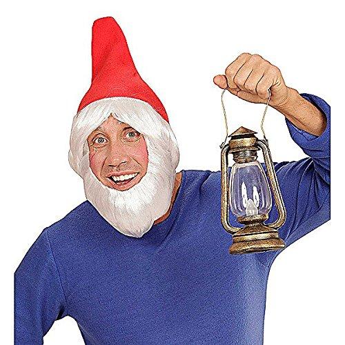 Widmann 00824 Gartenzwerghut mit Perücke und Bart, für Erwachsene, (Schneewittchen Sieben Zwerge Dress Fancy Kostüme)
