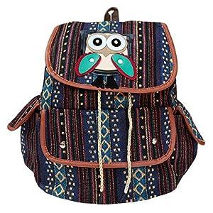 BRANDX Imported 3D Owl Passion light weight Canvas Backpack Cute Travel School College Shoulder Bag/Bookbags for Teenage Girls/Students/Women/ Girls- (US Best Seller) Designer3502B