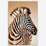 ge Bildet hochwertiges Leinwandbild XXL - Close-up Portrait von ein Baby Zebra im Etosha Nationalpark - Namibia - 80 x 120 cm einteilig | Wanddeko Wandbild Wandbilder Wohnzimmer deko Bild | 1967
