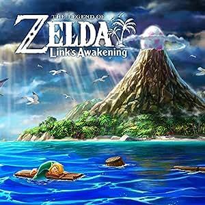 The Legend of Zelda: Link's Awakening (Arbeitstitel)