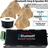 Outdoor Bluetooth Garten Lautsprecher System – 4 x 75 W Externe Sandstein Rock Wasserdicht Lautsprecher, Smart Home Wireless Mini-Verstärker & 25 m Kabel * Funktioniert mit Echo/Alexa * Außerhalb HiFi Kompakt Musik Player AMP – Surround Sound Kit – Bier Garten, Party, BBQ, Festivals
