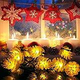 Cadena de Luz LED con Energía Solar WEINAS Luces Solares de La Secuencia, Luz de Decoración Exterior / Interior Impermeable para Hogar, Fiestas, Boda, Arbóles Navidad, Jardín, Patio, Terraza y al Aire Libre (Blanco cálido)