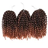 Silike (T 1/30) Marlybob/bouclés Curl (3/set) 20,3 cm Synthétique Cheveux bouclés Wave Crochet tressage