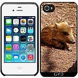 DesignedByIndependentArtists Coque pour Iphone 4/4S - Bébé Sanglier Adorable by...