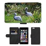 Just Cover Hot Stil Handy Karte Slot Hülle/Case/Brieftasche aus PU-Leder/m00139714Crane Kraniche Blue Crane Bird Animal//Apple iPhone 6Plus 14cm
