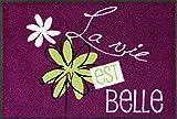 Wash+Dry la Vie EST Belle Felpudo, Acrílico, Morado, 50 x 75 x 0.7 cm