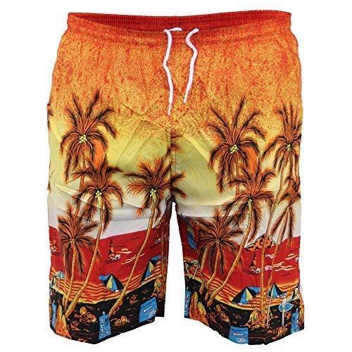 Uomo Hawaiano nuoto SHORTS SPIAGGIA BOXER PALMA STAMPA TAVOLA DA SURF, ESH FODERATO NUOVO Rosso - A045