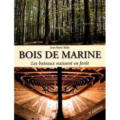 Bois de marine : Les bateaux naissent en forêt