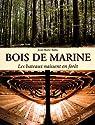 Bois de marine : Les bateaux naissent en forêt par Ballu