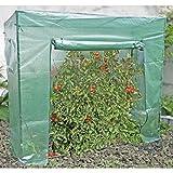 Garden Pleasure Gewächshaus für Tomaten, Paprika, Salat uvm. | stabile PVC-Folie | robustes Stahlgestell | ca. 196x78x196cm | optimaler Schutz vor Wind, Wetter & Ungeziefer | Tomatenhaus Frühbeet Foliengewächshaus