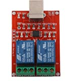 5V USB Schalter 2 Channal Relaismodul Computersteuerung Switch Modul