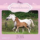 Mein Pferdekalender 2016 - Broschürenkalender (30 x 60 geöffnet) - Tierkalender - Wandplaner