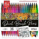 int!rend Dual Brush Pens, pennarelli con doppia punta - 36 colori, penne in fibra 1-5mm, fineliner 0,4mm, penna a pennello per calligrafia, acquerello, evidenziatore, art marker pen