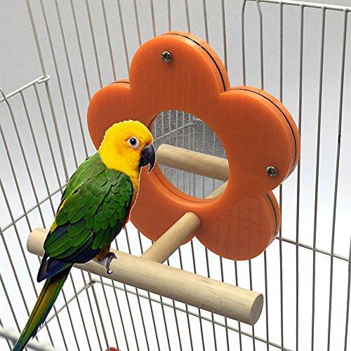 Whchiy Parrot Specchio Giocattoli Gabbia con piedistallo Staccabile per Pappagallini Pappagallo parrocchetto Cockatiel (Colore Casuale)