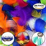 Yanoza 300 Stücke Decor Federn, Deko Ungiftig Bunte Kunstfedern Für Diy, Halloween, Maske, Hochzeit, Party Toy, Schule-15 Farben