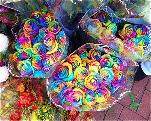 Diamant Peinture arc en ciel Rose Broderie 5D DIY Mosaïque Multicolore Rose Peinture Strass Croix Artisanat Point Percer Plein Cristal Image Paroi Décoration , square diamond , 60*48 cm