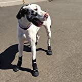 Dog boots :WALKABOOTS Size Large by Walkabout Bottes Chien: Walkaboots Grand