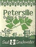 Die Stadtgärtner Petersilie'Gigante di Napoli'-Saatgut | Knackiger europäischer Klassiker | Samen für 80 Pflanzen