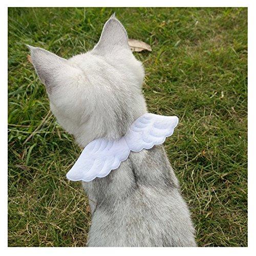 Lager Show Pet Kleine Hunde Katzen Verstellbar Cute Weichem Wildleder Engel Flügel Halsbänder für Welpen Kätzchen Bunny Kleine Tiere, S, White - Kostüm Auf Lager