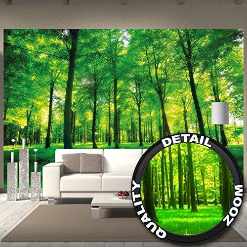 fototapete-baume-wandbild-dekoration-natur-pur-landschaft-wald-lichtung-sommer-entspannung-sonne-pfl
