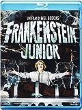 10-frankenstein-junior-special-edition-40-anniversario