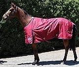 61V7R9UdmnL. SL160  BEST BUY UK #1Barnsby Equestrian Standard Neck Horse Turnout Rug 600D Oxford 100g Filling   Plum 59 price Reviews uk