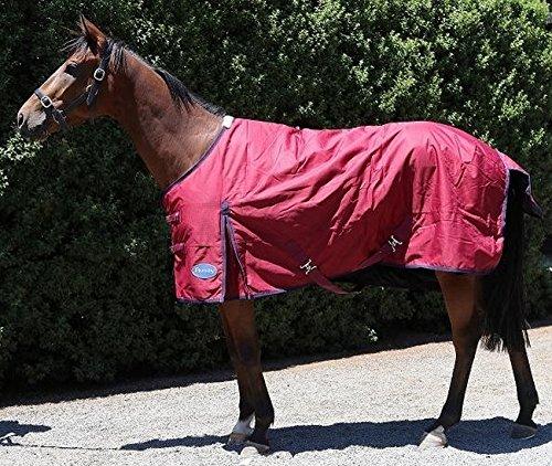 61V7R9UdmnL BEST BUY UK #1Barnsby Equestrian Standard Neck Horse Turnout Rug 600D Oxford 100g Filling   Plum 59 price Reviews uk