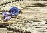 Tischsets Platzsets abwaschbar Kornblumen auf Treibholz von ARTIPICS 4er-Set Platzdeckchen Kunststoff 42x30 cm Kornblumen mit Ähren Sommermotiv Natur-Tischdeko
