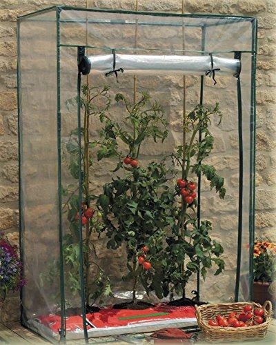 GARDEN FRIEND s1144720, Gewächshaus Tomaten