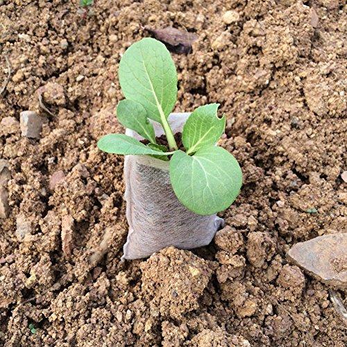 KAYI Seedling-Raising Sacs 100 PCS Plant Pousser Sac Pépinière Sacs Plantes Poche Maison Sac De Jardin Fournitures