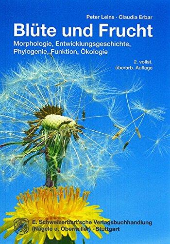 Blüte und Frucht: Morphologie, Entwicklungsgeschichte, Phylogenie, Funktion und Ökologie