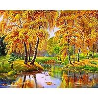 AFVYH Diamante Pintura Pintura Llena otoño otoño Hoja Bricolaje Fuente Amazon se Puede Personalizar la Venta Directa de la fábrica del Paisaje, Hoja de otoño 35 * 45