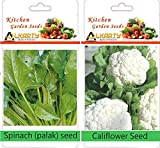 alkarty Spinach and califlower winter ve...