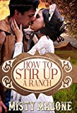 How to Stir Up a Ranch (English Edition)