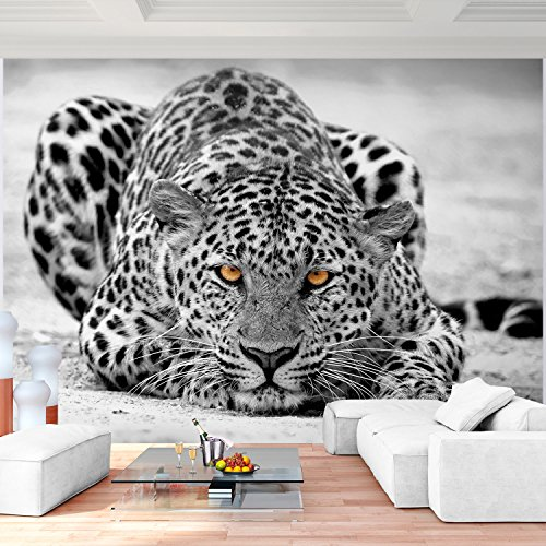 Fototapete Leopard 352 x 250 cm - Vliestapete - Wandtapete - Vlies Phototapete - Wand - Wandbilder XXL - !!! 100% MADE IN GERMANY !!! Runa Tapete 9034011b