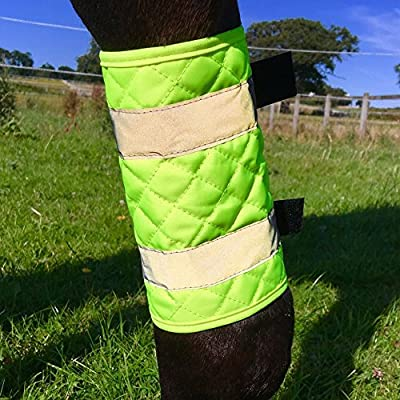 Equisafety Stepp Bein-Bandage