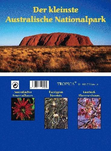 Mini-serre - parc national australien - avec graines d'arbre de feu, eucalyptus et lacebark