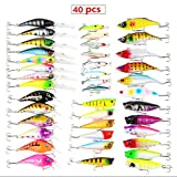 BrilliantDay 40 artificielles pêche leurre appât Leurre Boîte d'articles de pêche appâts leurres Kit, Le Meilleur Choix pour la pêche appâts leurres de pêche pour d'eau Douce