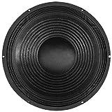 Soundlab 30,5cm 150W 8Ohm Lautsprecher Chassis Lautsprecher Treiber ideal für allgemeine PA und Disco Schränke