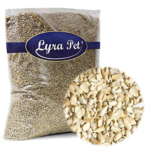 Lyra Pet GmbH 4260361036247