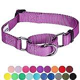 Blueberry Pet Sicherheitstraining Martingale Hundehalsband Klassisch Einfarbig 2,5 cm L Basic Polyester Nylon Hundehalsband Langlebig - Violett