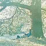 Plastic Ono Band (Clear Vinyl) [Vinilo]