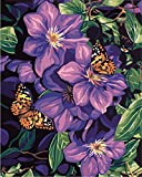 obella Malen nach Zahlen Kits    Butterfly Orchidee 50x 40cm    Malen nach Zahlen, DIGITAL Ölgemälde, rahmenlose