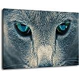 Format 120x80cm triste peinture des yeux sur toile, XXL énormes images complètement encadrée avec civière, le cadre photo feuille de paroi