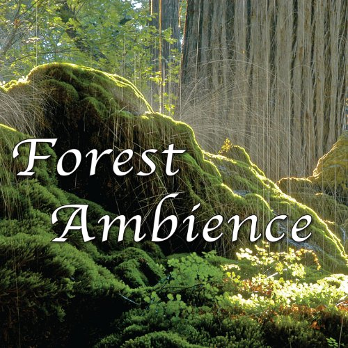 Forest Ambience - Healing Natu...