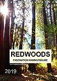 Redwoods - Faszination Mammutbäume (Tischkalender 2019 DIN A5 hoch): Zwölf atemberaubenden Naturaufnahmen der fazinierenden Mammutbäume (Monatskalender, 14 Seiten) (CALVENDO Natur)