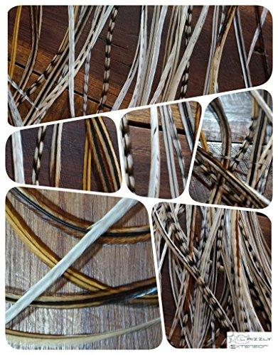 Grizzly-Extensions Lot de 5 extensions en plumes pour cheveux bruns Couleur naturelle/blanc
