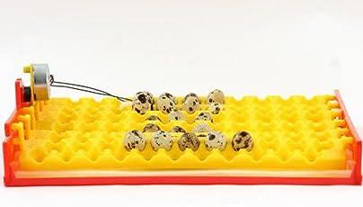 HeuSa Tech Legehorde mit Wendemotorsystem für Inkubator, Brutkasten 132 Eier, Wachteleier, Taubeneier, Brutmaschine