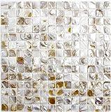 Mosaik Fliese Muschel hellbeige für WAND BAD WC DUSCHE KÜCHE FLIESENSPIEGEL THEKENVERKLEIDUNG BADEWANNENVERKLEIDUNG Mosaikmatte Mosaikplatte