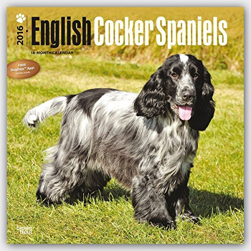 English Cocker Spaniels 2016 Wall